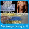 Nandrolone Phenylpropionate (CAS 62-90-8) Durabolin del Npp para el Bodybuilding