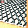 HDPE Geonet/Plasticのネット--専門のManufacturer