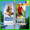 Bannières accrochantes adaptées aux besoins du client de drapeau d'affichage de la publicité extérieure de câble de rue