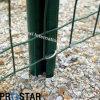 PVC покрыл Mush сваренный пятном (euro загородка)