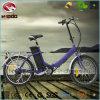 motorino piegante elettrico della bici En15194 di 250W E mini
