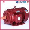 380V、400V、415V、440V Three Phase Low Voltage AC Motor