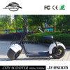 Кокосы города самоката популярного колеса города 2 электрические (JY-ES005)