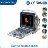 Ultrassom Doppler a cores portátil digital para veterinária Ysd900A-Vet