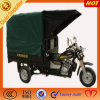 Three Wheeled Motorcycle를 위한 방수 Canopy