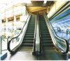 Capacidad de interior 9000kg de la velocidad 0.5m/S de la escalera móvil de la escalera móvil de la alameda de compras