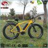 350W visualización sin cepillo Ebike del LCD del motor de la bicicleta En15194 26  de la aleación del marco de litio de la batería de la bici eléctrica de la playa