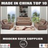 現代様式の本革の居間のソファー