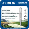 Bombas solares de la C.C. |Imán permanente|Motor sin cepillo de la C.C. |El motor se llena de agua|Receptor de papel solar Pumps-4sp8/5 (ST)