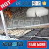 Luft kühlte Block-Speiseeiszubereitung-Maschine ein 5 Tonnen-/Tag ab