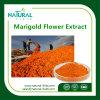 自然な食品着色料ルテインかゼアキサンチンの粉のマリーゴールドの花のエキス