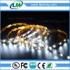 Striscia dell'indicatore luminoso 2835 LED di figura di S