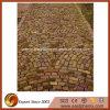 패턴 돌을 포장하는 외부 장식적인 벽돌