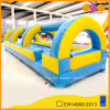 Blue e Yellow gonfiabili Water Slides (AQ1020)