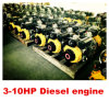 5.5L de Dieselmotoren 3000/3600RPM van Fuel 5.7kw Single Cylinder