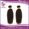 Соткать человеческих волос курчавых волос девственницы Remy фабрики индийский (HKCI-A217)