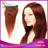 T Color 33#/14# Straight Eurasian Hair Clip in Hair Extension