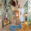 Ascenseur à la maison en verre de gerbeur de villa de passager