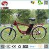 2017 دراجة كهربائيّة [250و] [إبيك] لأنّ عمليّة بيع