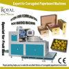 과일 포장기를 위한 자동적인 물결 모양 상자 기계