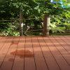 im Freien zusammengesetzter hölzerner Plattform-Bodenbelag, wasserdicht