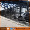Puerta y cerca hermosas del hierro del patio trasero