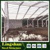 판매를 위한 중국 경제 빛 강철 Prefabricated 집