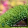 дерновина травы высоты 35mm для сада