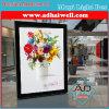 Centro comercial Pasillo que hace publicidad del panel puesto a contraluz (W 1.2 X H 1.8 M)