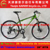 Tianjin Gainer 26  MTB Bicycle Aluminum Highquality 21sp