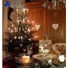 2014 de Modieusste Decoratie van de Werf van Kerstmis