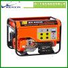가솔린 발전기/가스 발전기