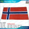 ノルウェーのフラグ、ノルウェーの国旗、屋外の飛行のフラグ