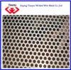Het aluminium Geperforeerde Blad van het Metaal (tyb-0055)