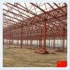 Estructura del marco de acero para el taller o el almacén