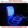 Luces impermeables de la decoración de interior al aire libre LED
