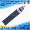 3.8-6.6kv Aluminum XLPE 1C Light Duty Electric XLPE Wire Cable