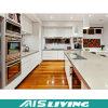 Laca por encargo con los muebles de los armarios de la cocina del cuarzo (AIS-K205)
