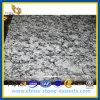 スプレーの白いSpoondriftの花こう岩の平板(YQZ-GS1028)