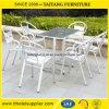 De Lijst van de Picknick van het aluminium en de Draagbare Levering voor doorverkoop van Stoelen