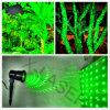 Laser ampliamente utilizado Light del jardín de Best Price para Christamas