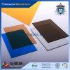De nieuwe Aankomst drukte het Decoratieve Stevige Blad van het Polycarbonaat af