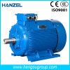 Motor eléctrico de la inducción Squirrel-Cage asíncrona trifásica de la CA de Ie2 0.55kw-4p para la bomba de agua, compresor de aire