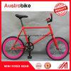 소형 조정 기어 자전거 20 인치 소형 다채로운 조정 기어 자전거