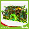 Liben использовало парк спортивной площадки малышей крытый для сбывания
