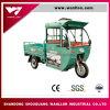 Triciclo elettrico ibrido della benzina/elettrico adulti 3 della rotella per il tassì di Passanger