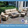 Nizza insieme del sofà della mobilia di disegno 2012