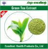 Extrait de thé vert avec EGCG/Polyphenols/Catechins