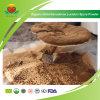 Secado del fabricante del proveedor Orgánica Reishi polvo de esporas