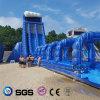 Скольжение воды конструкции воды кокосов раздувное большое с стимулировать LG8097